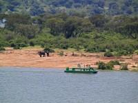 7 Days Murchison Falls National Park, Kibale National Park And Queen Elizabeth National Park Safari.