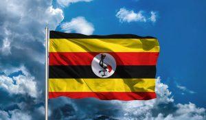BEST TIME TO VISIT UGANDA | EAST AFRICA