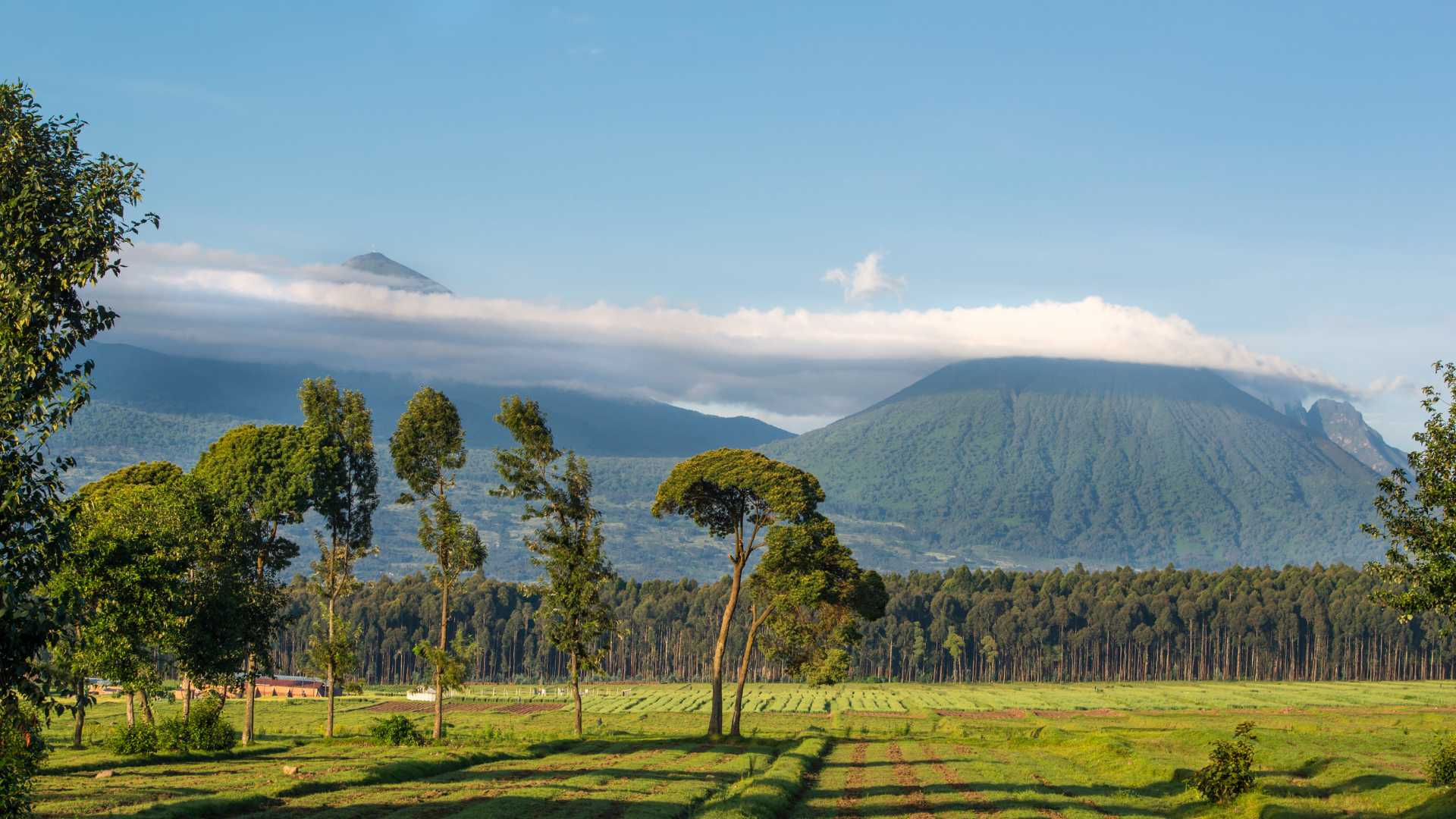 THINGS YOU SHOULDN'T MISS IN RWANDA