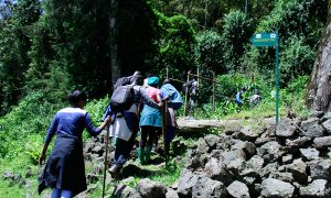 2 Days Mount Karisimbi Hiking